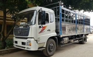 Xe tải Dongfeng 9 Tấn Máy Cumin 180Hp